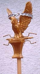 The Aquila was generally depicted holding Zeus' lightning bolt in its claws.