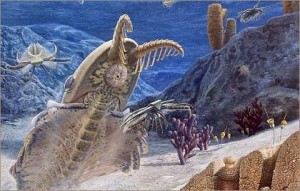 Most major body plans emerged suddenly without transitional forms during the Cambrian explosion.