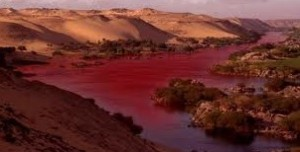 The plague of blood Revelation 14 A Preterist Commentary